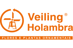 1-veiling-holambra